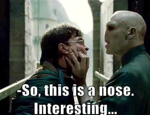 Funny-Voldemort-and-Harry-Potter[1]