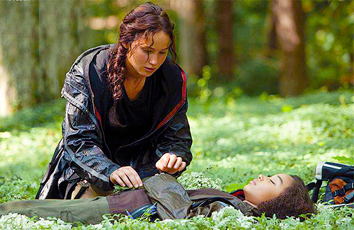 THG-stills-the-hunger-games-movie-29947816-500-325[1]