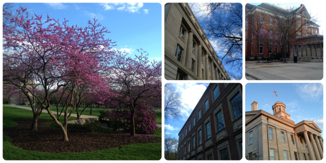 iowa spring 2016 building and tree pictures